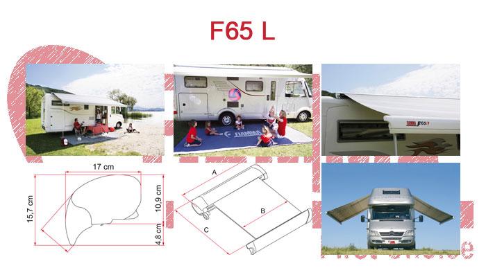 F65 L
