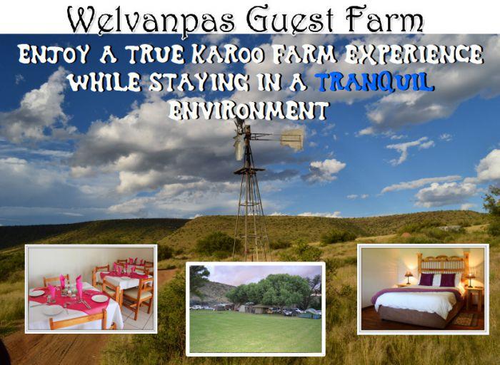 Welvanpas Guest Farm