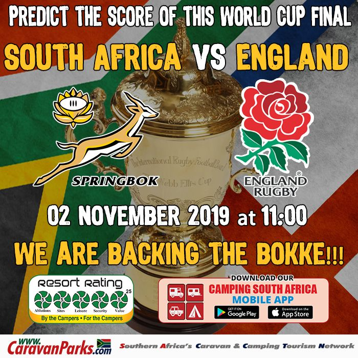 Predict the score of the 2019 Rugby World Cup Final - RSA vs England