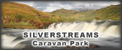 Silver Streams Caravan Park - Caravan Parks, Camping Sites, Holiday Resorts in KwaZulu-Natal South Africa
