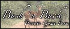 Bush n Buck Private Game Farm - Caravan Parks, Camping Sites, Holiday Resorts in North West South Africa